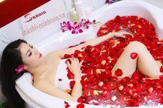 Bồn tắm thiết bị vệ sinh toto đầy hoa hồng