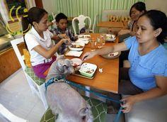 CLICKS – Donos e animais fazem refeições na mesma mesa em restaurante filipino   The New YooKer Times  http://www.yooker.com.br/br/clicks/TheNewYookerTimes-clicks-donos-e-animais-fazem-refeicoes-na-mesma-mesa-em-restaurante-filipino.html