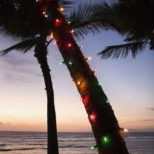 Christmas In Florida Keys.13 Best Christmas In The Florida Keys Images Florida Keys
