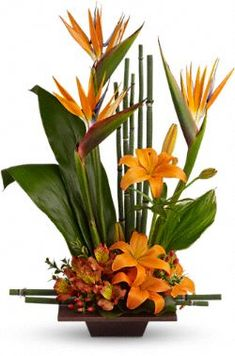 I love Birds of Paradise. <3 $84.95 from Teleflora
