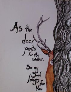 As the deer pants for streams of water, so my soul pants for you, my God.