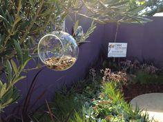 Garden Week Display 2013 - Perth, Western Australia. DBM Landscapes. Eva Solo Glass Bird Feeder.