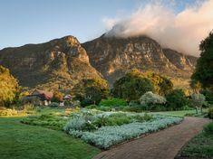 Kirstenbosch at Dawn / Clickasnap National Botanical Gardens, Cape Town, South Africa, River, Landscape, Outdoor, Botanical Gardens, Outdoors, Outdoor Games