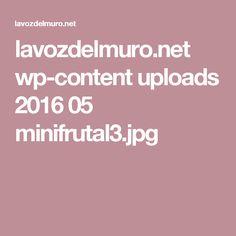lavozdelmuro.net wp-content uploads 2016 05 minifrutal3.jpg