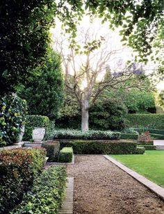Garden - Lisa Tolkin, Johannesburg