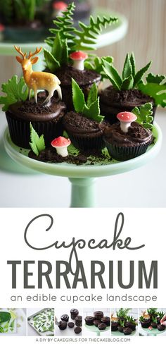 Cupcake Terrarium - how to make a nature-inspired terrarium filled with cupcakes, edible greenery, petite mushrooms and miniature deer. Pretty Cakes, Cute Cakes, Fudge, Cupcake Cookies, Diy Cupcake, Small Cake, Cake Tutorial, Cute Food, Creative Food
