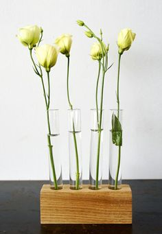 Test Tube Flower Vase | Home Garden & Patio