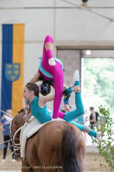 These are the best pictures from the Lower Austria Volti Cup! – Art Of Equitation Trick Riding, Horse Camp, Acro, Vaulting, Gymnastics, Equestrian, Cool Pictures, Horses, Muscle Up