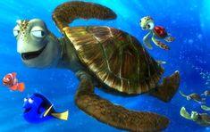Ο μπαμπάς και η μαμά χελώνες: ένα τρυφερό παραμύθι για το διαζύγιο