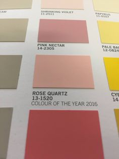 Pantone's Colour of the Year 2016 Rose Quartz is now available for every wall in your house through the Fleetwood Prestige range! Pantone Paint, Pantone Color, Fleetwood Paint, Year 2016, Color Of The Year, Color Mixing, Rose Quartz, Range, Colours