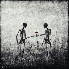 #skulls #skeletons