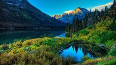 Superb Nature Corner