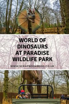 Belle du Brighton Blog World of Dinosaurs at Paradise Wildlife Park