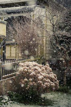 snowing somewhere