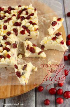 Cranberry-Bliss-Fudge-DelightfulEMade.com-wtxt-669x1024