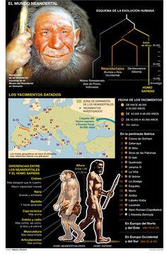 Los últimos Neandertales se extinguieron hace 40.000 años
