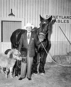 Walt Disney with the Disneyland pack animals