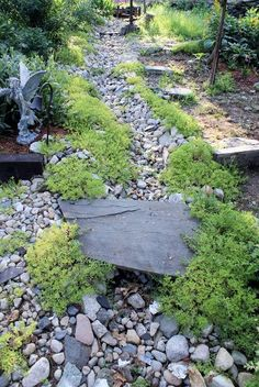 Dry river Bed...garden flowing w/golden sedum....no more wash outs...PRICELESS