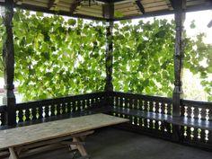 CASE ROMÂNEȘTI la comandă - arh. Liliana Chiaburu Porch Swing, Outdoor Furniture, Outdoor Decor, Garden Bridge, Arch, Wooden Houses, Outdoor Structures, Railings, Container