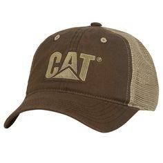 e8dd32cd49727 53 mejores imágenes de CAT SENSACIONAL!!!!