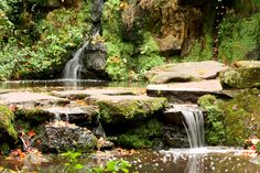 Fairy Glen, Sefton Park, Liverpool Fairy Glen, Liverpool Home, United Kingdom, Britain, Past, Waterfall, Waiting, Scenery, Places To Visit