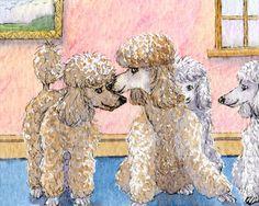 telling poodle secrets