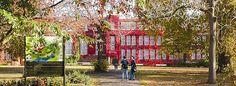 Séjour linguistique en college à Regent School #RegentSchool #School #UK #SéjourLinguistique
