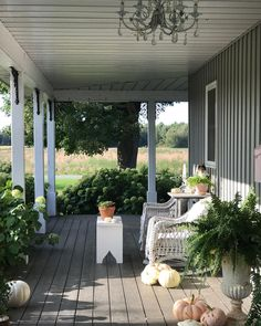 "Tracey Hiebert on Instagram: ""I've kept the fall porch quite simple this year....(and Nutmeg of course is part of the decor, can you spot her?😻) and speaking of Nutmeg…"""