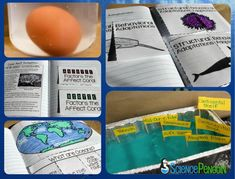 Interactive Science Notebook using theme of Oceans to teach Earth, Physical, and LIfe Science concepts.