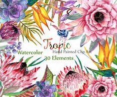 Watercolor Floral Clip art: FLORAL CLIPART Floral от LeCoqDesign