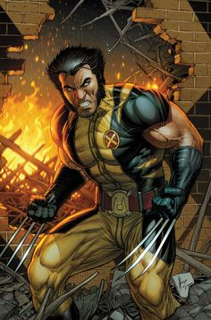 Marvel comics for April 2012: this is the variant cover to Wolverine #304, drawn by Dale Keown, my final selection of of visuals from the solicitations. He does draw a good Wolvie.
