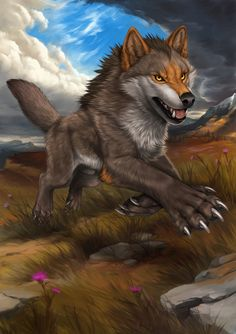 Wolf Photos, Wolf Pictures, Furry Wolf, Furry Art, Animal Sketches, Animal Drawings, Cool Wolf Drawings, Wolf Hybrid Dogs, Hybrid Art