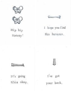 4 Anatomy Greeting Cards Gift Pack Funny Skeleton Medical Science Humor Gothic Get Well For Him Nurse Doctor Geekery Bones Stocking Stuffer by ModDessert on Etsy https://www.etsy.com/listing/88772706/4-anatomy-greeting-cards-gift-pack-funny