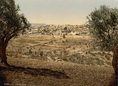 [From the Mount of Olives, general view, Jerusalem, Holy Land]