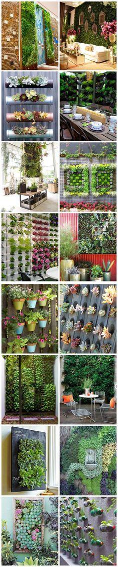 Boas ideias para jardibs verticais. Acho essa opção de jardim ótima para quem não tem muito espaço mas gostaria de um pouco de verde em casa.:
