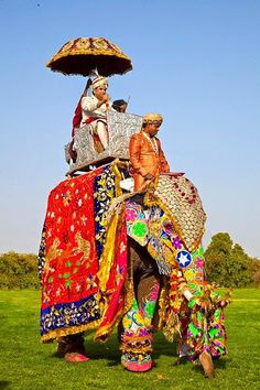 The Elephant Festival is held every year at Jaipur, the capital city of Rajasthan, India.  Elephants have always held an important place in the Indian society, Lord Ganesha, the Hindu deity with the head of an elephant is greatly revered and is the lord master of all ceremonies and happy beginnings.