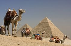 To counter a drop in demand due to Arab Spring unrest, providers are rolling out some incredible price reductions for Egypt travel. As of press time, we spotted offers like 50 percent off Egypt tours from luxury tour operator Abercrombie & Kent; this deal also includes complimentary travel insurance with select trips.