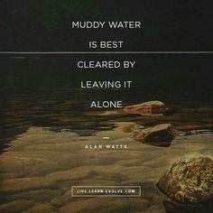 Muddy water is best cleared by leaving it alone. Alan Watts on the mind. Peace Quotes, Words Quotes, Wise Words, Quotes To Live By, Me Quotes, Change Quotes, Sayings, Attitude Quotes, Wisdom Quotes