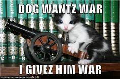 Show Those Dogs No Quarter!