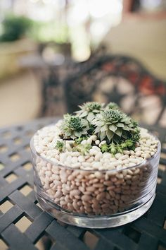 ~C~ Used here as table centerpiece for a wedding
