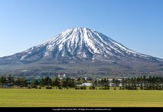 Green fields and Mt Yotei