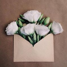 Kiev-based photographer Anna Remarchuk has created these poetic compositions tucking flowers inside of envelopes from her great-grandfather. White Eustoma.