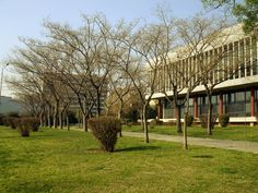 AUTH Main Library - Aristotle University of Thessaloniki - Wikipedia Main Library, Thessaloniki, Pergola, Arch, Sidewalk, University, Outdoor Structures, Garden, Plants