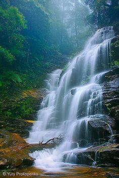 Sylvia Falls | See more Amazing Snapz
