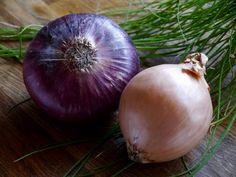 Hagyma fajták – számos fajtáját ismerjük és használjuk, van ami csak időszakosan elérhető, van amihez egész évben hozzájuthatunk Garden Soil, Edible Garden, Fruit Garden, Growing Vegetables, Fruits And Vegetables, Veggies, Onion Benefits Health, Green Onions Growing, Planting Onions