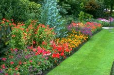 Flower bed of only perennials. Comes back every year with fairly light maintenance.