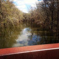 Lost Bridge Trail. Springfield IL.