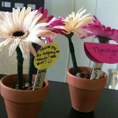 """Teacher appreciation Gift... Homemade flower pens in a pot filled with river rocks.   """"thank you for helping me bloom"""" and """"thank you for everything you've planted in my mind this year"""".  Cheap, fun, and easy to make!"""