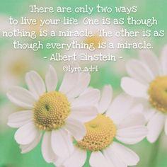 Existem apenas duas maneiras de viver a sua vida. Uma é como se nada fosse um milagre. A outra é como se tudo fosse um milagre. - Albert Einstein -