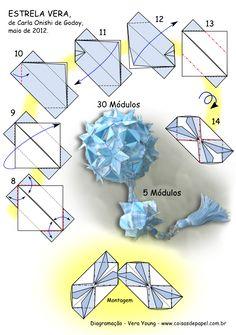 Diagrama da Estrela Vera de Carla Onishi de Godoy pg 2